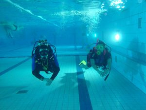 taucher-schwimmbad